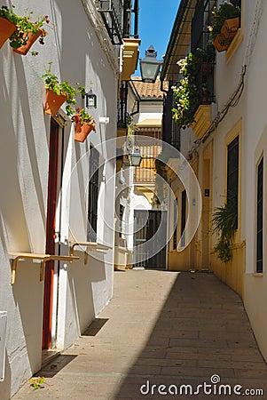 Traditional Cordoba Street