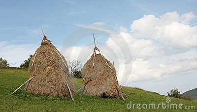 Traditional haystacks