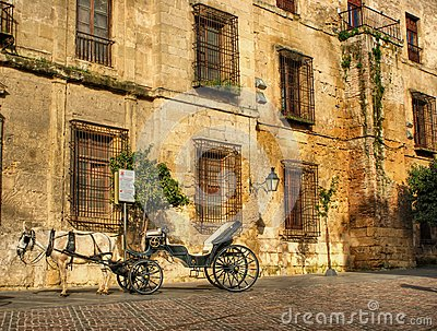 Traditional horse and cart at Cordoba in Spain
