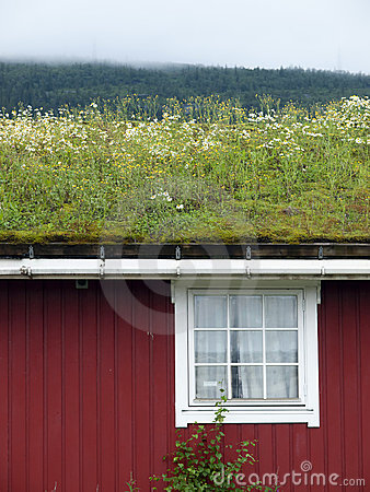 Traditional scandinavian grass roof
