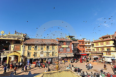 Traditionali house and Pigeon  in Kathmandu,nepal Editorial Image