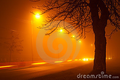 Traffic on foggy road