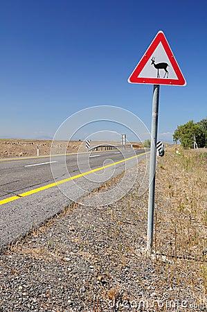 Traffic Sign Deers.