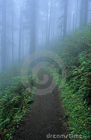 Trail 22