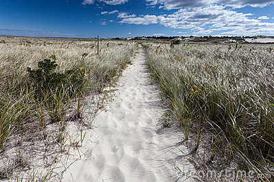 Trail on Crane beach in Massachusetts