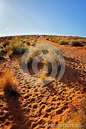 Trail in desert