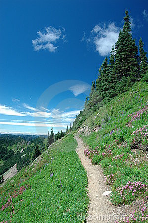 Trail in high elevation