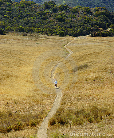 Trail runner in yellow field