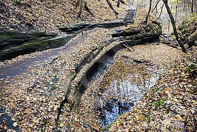 Trail in Starved Rock State Park