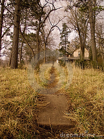 The Trail Towards Home