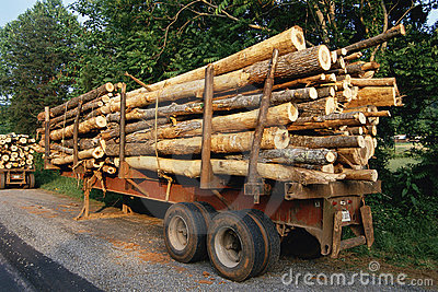 Trailer with logs Editorial Stock Image