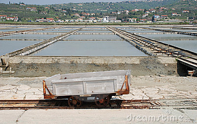 Trailer in Salt Crystallization Field