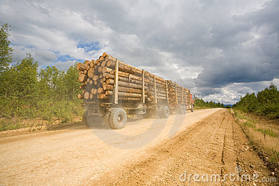 Trailer truck loaded with wooden logs