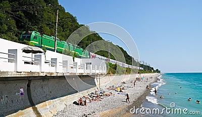 Train goes above a beach