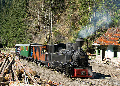 Train in Maramures forest