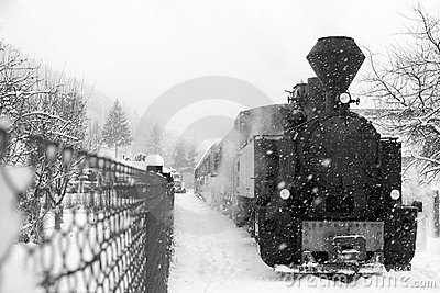 Train in Maramures forest, winter time
