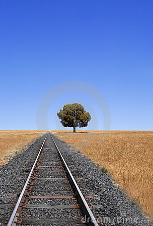 Train Tracks And Horizon