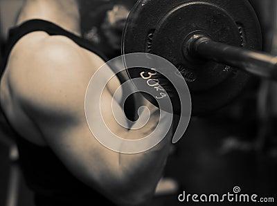 Training barbell gym strength