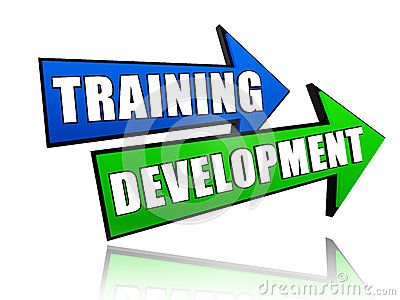Training development in arrows