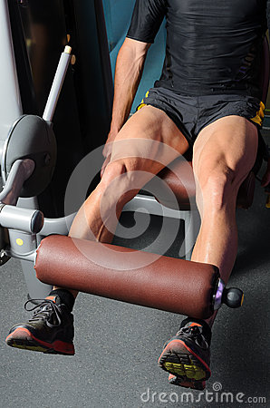 Training Quadriceps