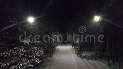 Trajeto do parque na noite na neve grampo Ideia superior do gerencio misterioso e assustador fora das luzes no mergulho da fuga d vídeos de arquivo