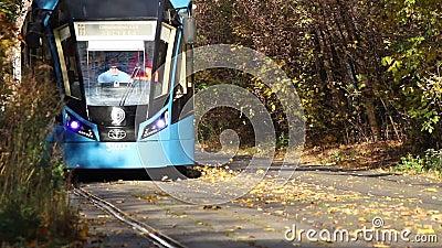 Tram arrivante in una foresta archivi video