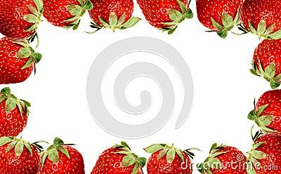 Trame de fraise