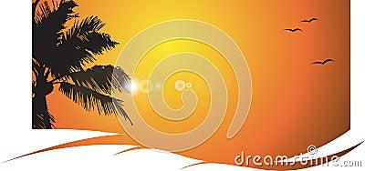 Tramonto caldo con la palma, tropicale