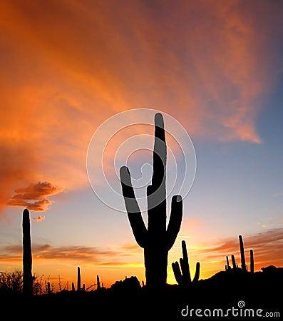 Tramonto dell Arizona