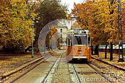 Trams in Europe