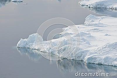 Tranquil Antarctic scene