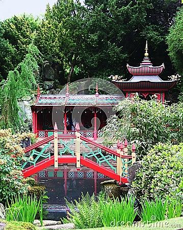 A tranquil Japanese garden