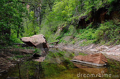 Tranquil Reflections of Oak Creek