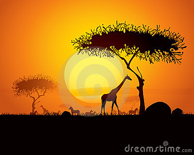 Tranquil sunset scene in africa