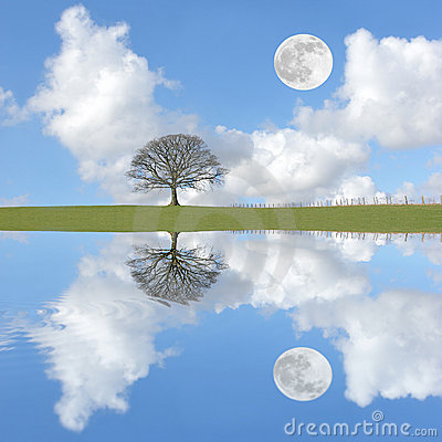 Free Tranquility Stock Photography - 5727772