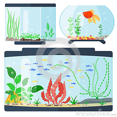Free Transparent Aquarium Vector Illustration Habitat Water Tank House Underwater Fish Tank Bowl. Royalty Free Stock Photography - 94403577