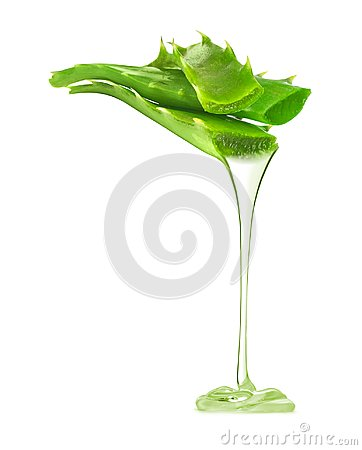 Free Transparent Essence From Aloe Vera Plant Drips From Leaves Royalty Free Stock Photography - 99970357