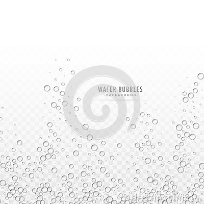 Free Transparent Water Bubbles Vector On White Background Royalty Free Stock Photography - 102076717