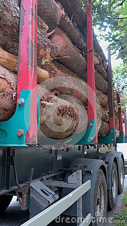 Transportation of tree trunks