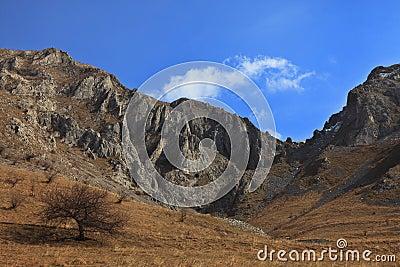 Trascau Mountains,Romania