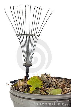 Trash bin, dry leaves and rake