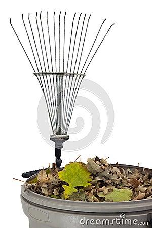Trash bin, dry leaves and rake