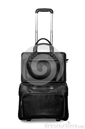 Travel or business bag