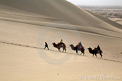 Travel in desert