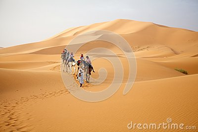 Travellers on the camels Editorial Image