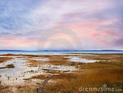 Traverse Bay Marsh