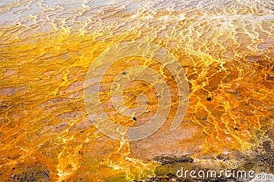 Travertine Salt Pool