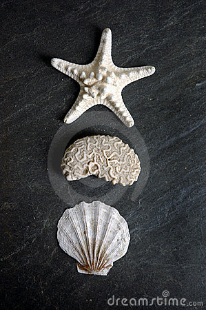 Tre figure del mare