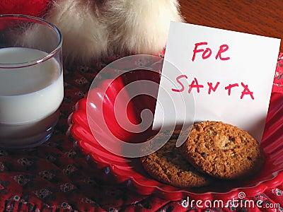 A Treat for Santa