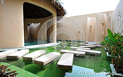 Treatment pool